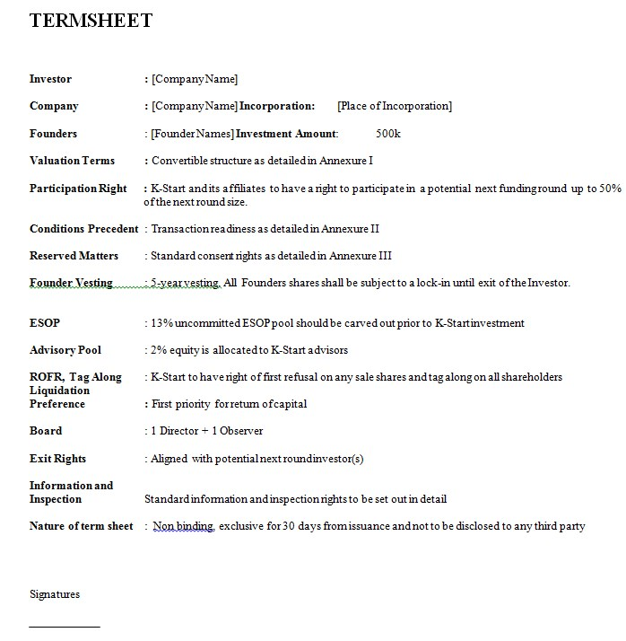 Investor Term Sheet Sample