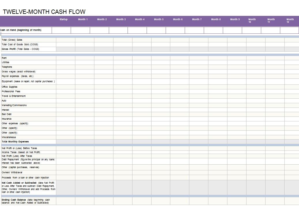 12 month cash flow statement
