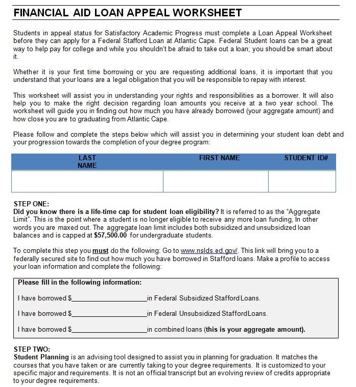 Financial Loan Worksheet