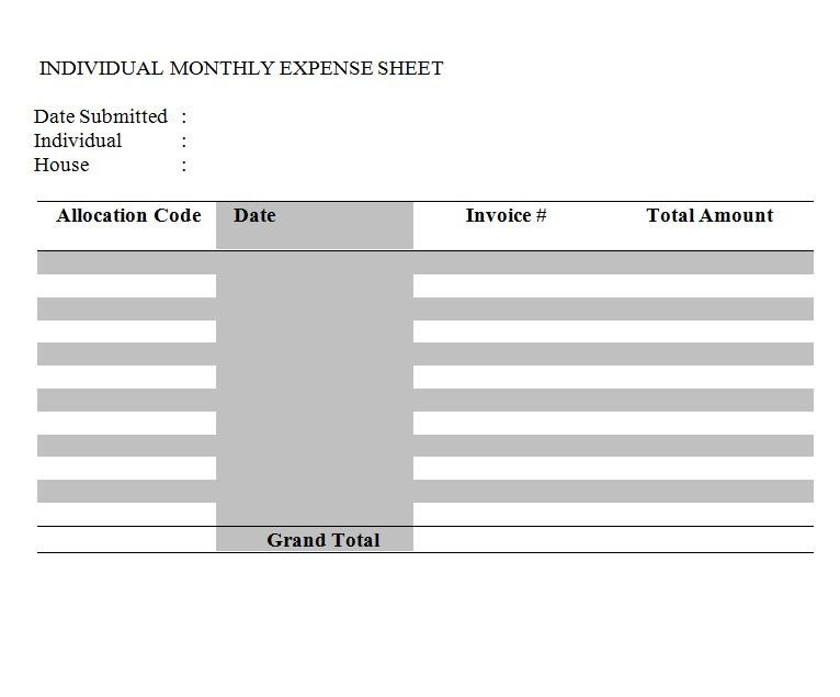 Individual Monthly Expense Sheet