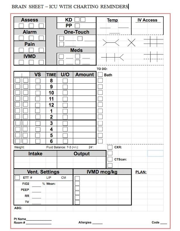 Nursing Worksheet Brain Sheet Template