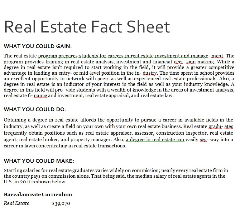 Real Estate Fact Sheet Example