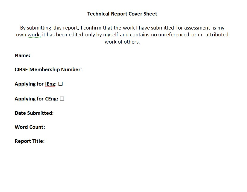 Technical Report Sheet Example