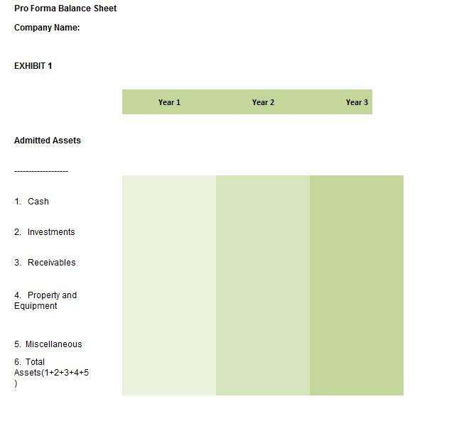 sample pro ma balance sheet template