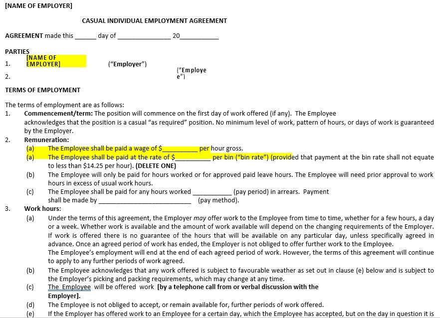 Individual Employee Employement Agreement Form