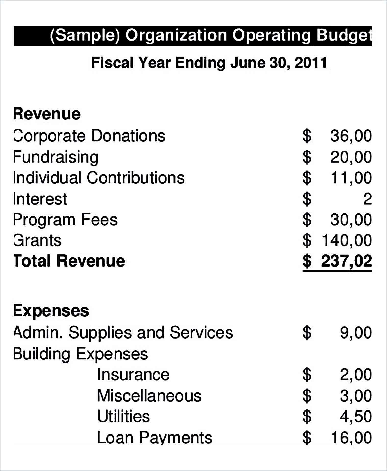 Organization Operating Budget Template