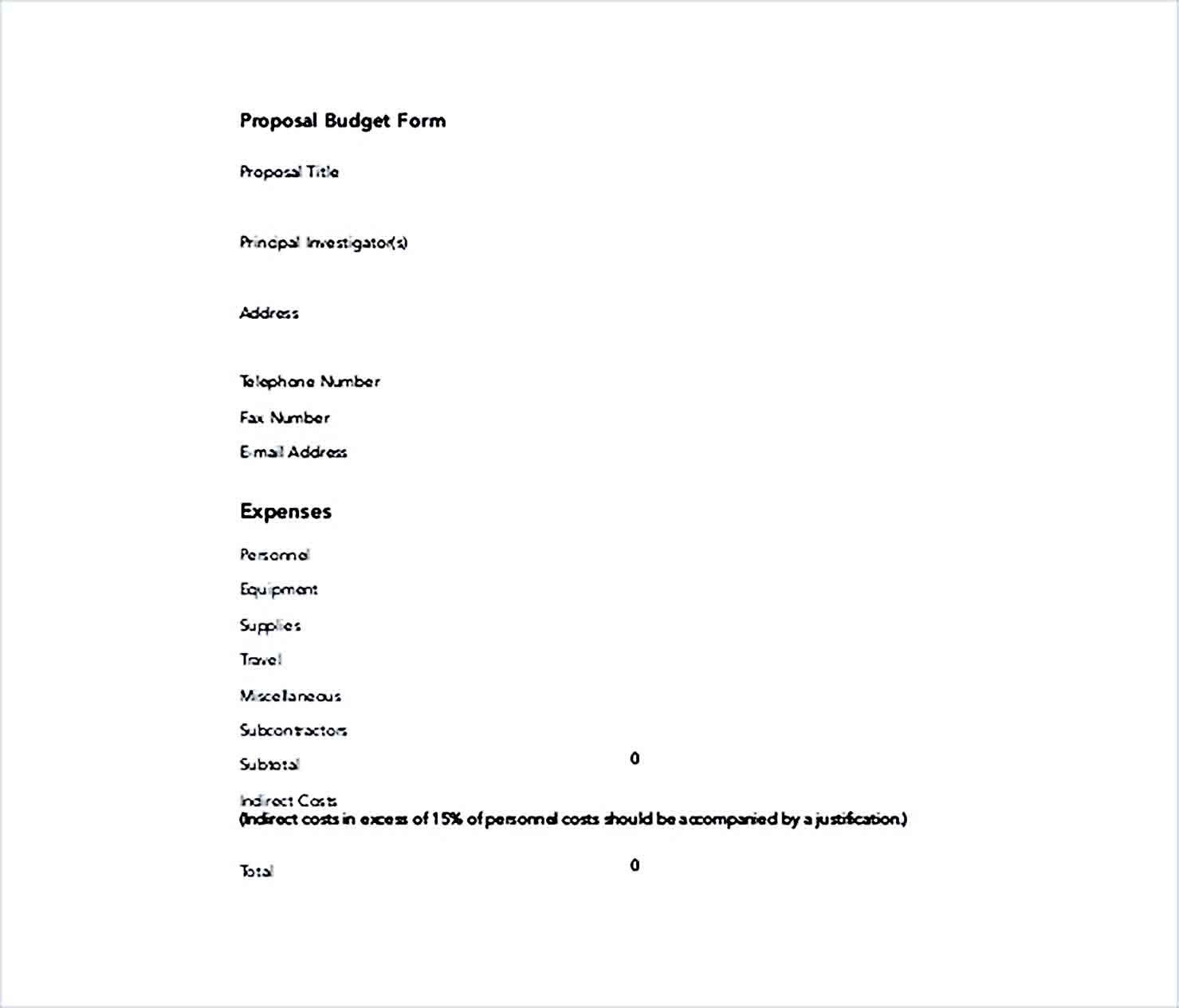 Sample IT Proposal Budget Form