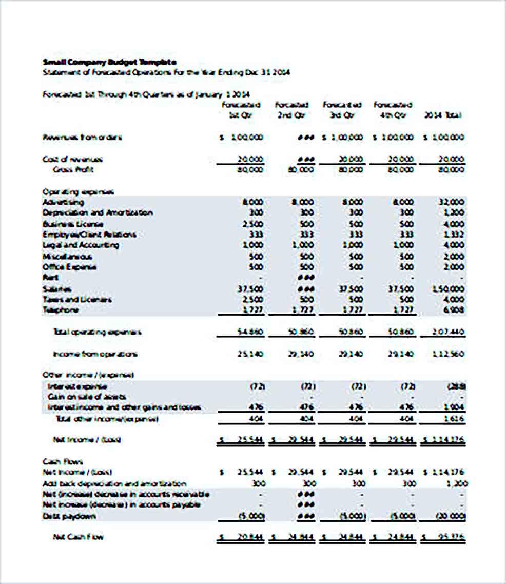 Sample Small Company Budget