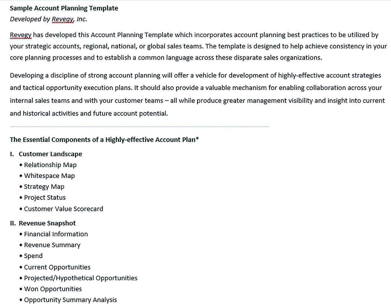 Strategic Account Plan