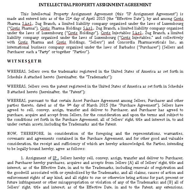 Intellectual Property Assignment Agreement in PDF