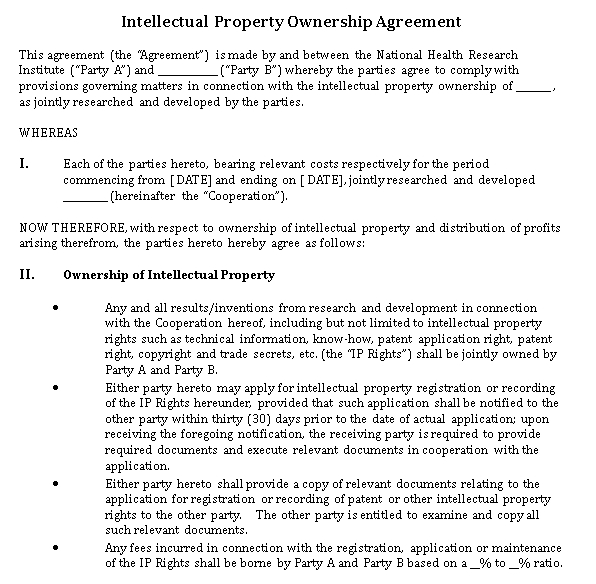 Intellectual Property Ownership Agreement in DOC