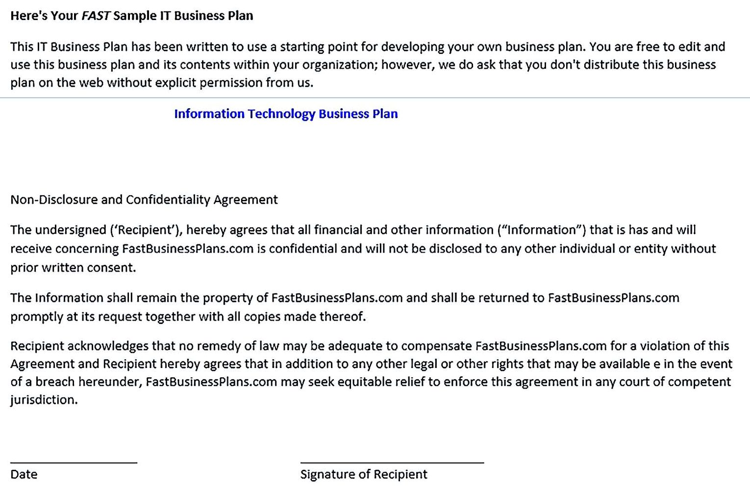 It Business Plan Template