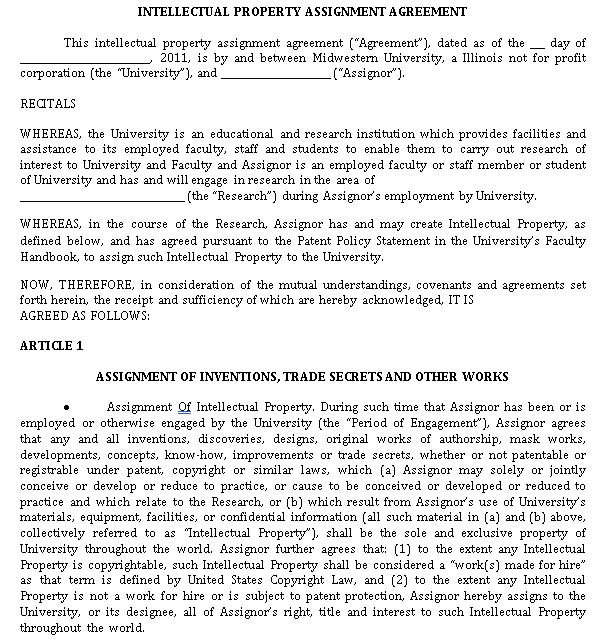 Professional Intellectual Property Agreement in PDF