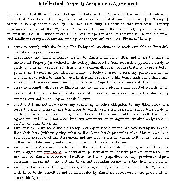 Simple Intellectual Property Assignment Agreement Template