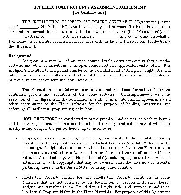 Standard Intellectual Property Assignment Agreement