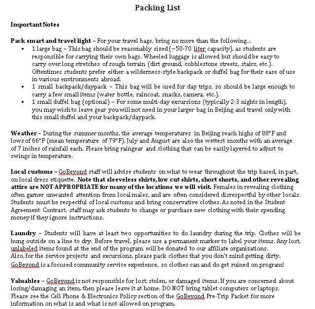 Travel Packing List Template 5