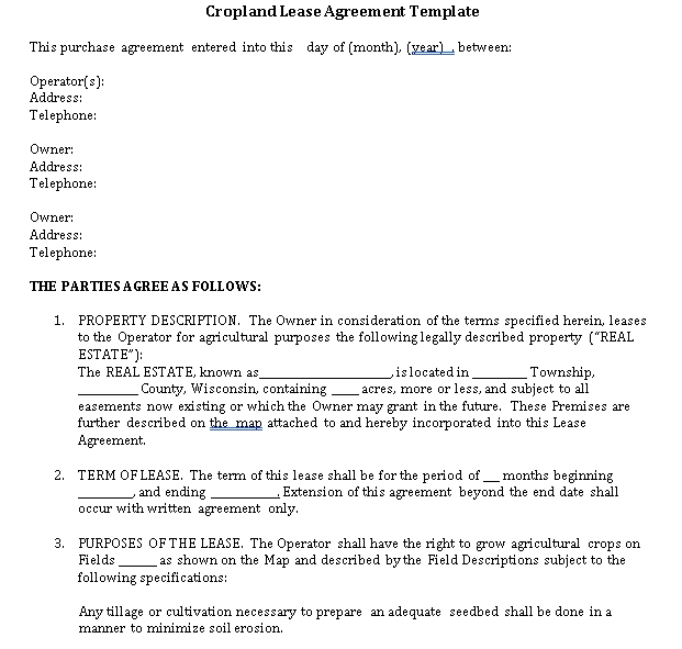 Property Lease Agreement Template 3